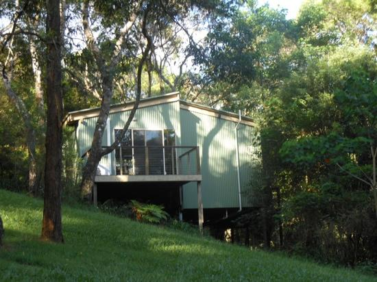 Kondalilla Eco Resort: rosella treehouse