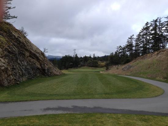 Highland Pacific Golf: tough par 3 wind funnels through and makes it a tough tee shot.