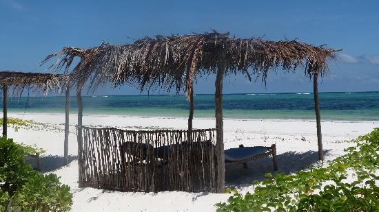 Mchanga Beach Resort: sun loungers on the beach