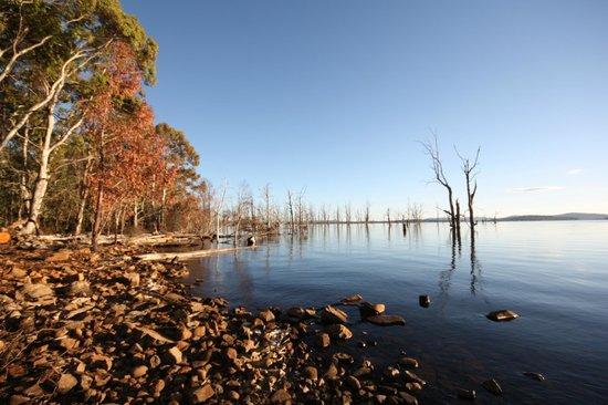 Blue Lake Lodge : Overlooking Arthurs Lake