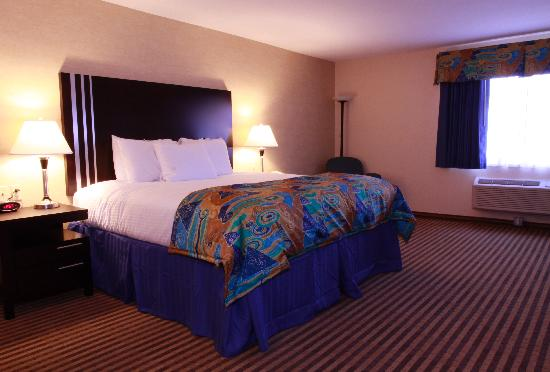 BEST WESTERN PLUS Portage Hotel & Suites: King Room