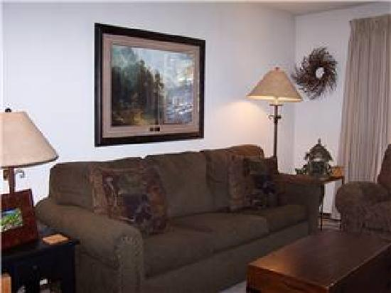 Destinations West at Beaver Village Condominiums: Living Room Example