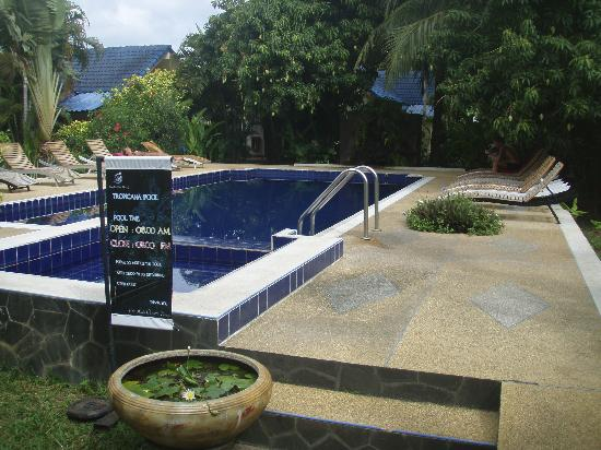 Baannueng@Kata (The Kata Orient House): La Piscina