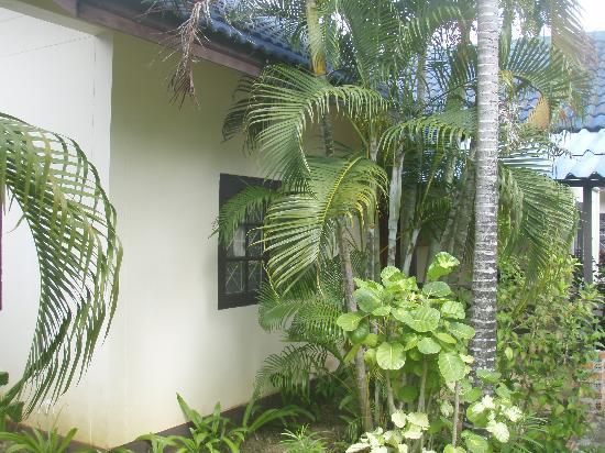 เดอะกะตะโอเรียนท์เฮาส์: Il nostro bungalow