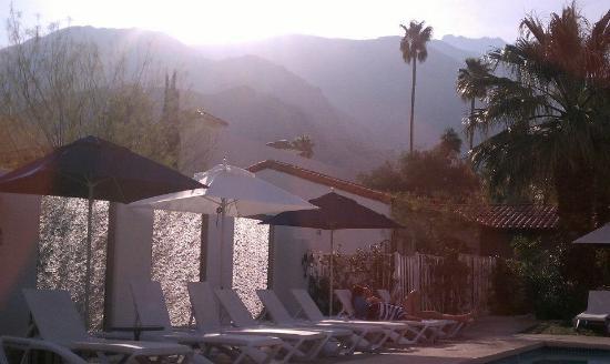 Alcazar Palm Springs: Beautiful pool area at sunset.