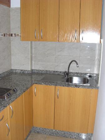 Las Arenas Apartamentos: vista parcial de la cocina