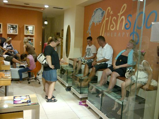 Chania Prefecture, Griechenland: FISH SPA THERAPY AT LITTLE LUXURY DAY SPA PLATANIAS CHANIA NEXT  TO MYLOS SUPER MARKET