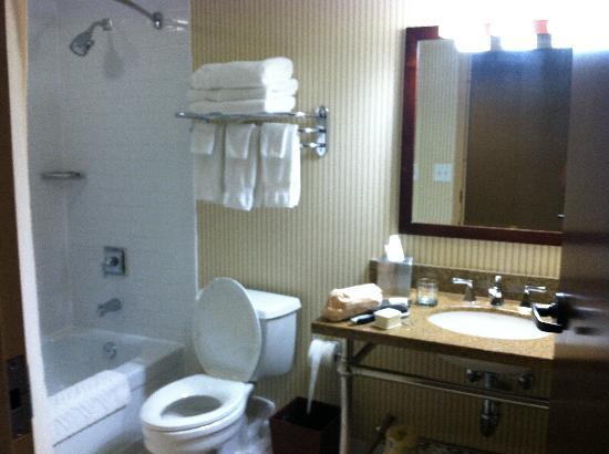 DoubleTree by Hilton Cincinnati Airport Hotel: Bathroom