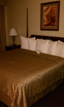 BEST WESTERN PLUS Inn on the Park: The bed