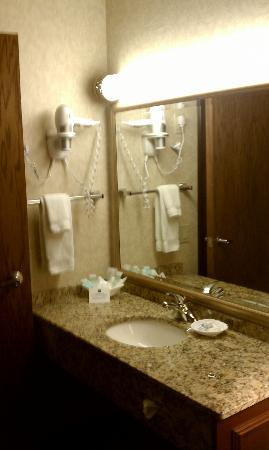Best Western Premier Park Hotel: Vanity and sink