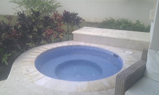One Battaleys Mews: Pool in garden.