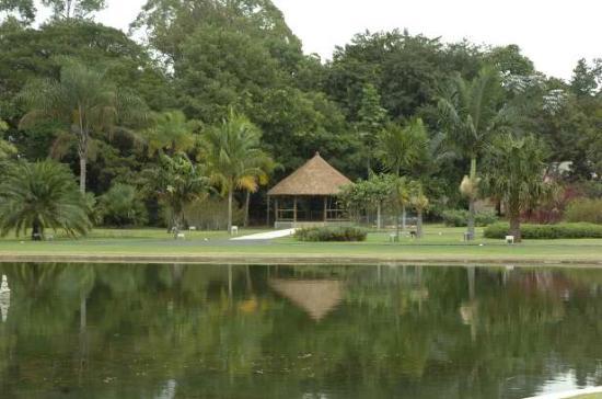Nova Odessa: Jardim Botanico Plantarum, Nova Odessa