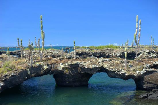 Puerto Villamil, Ισημερινός: Los Tuneles