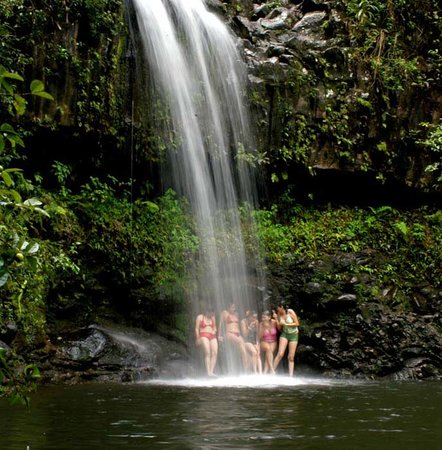 Hike Maui : East Maui Waterfalls Hike