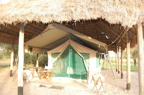 Whistling Thorn Tented Camp: our tent