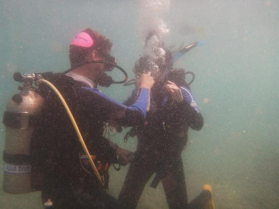 Whitsunday Dive Adventures - Dive Courses & Half Day Dive Trips: Florian coaching one of the students.