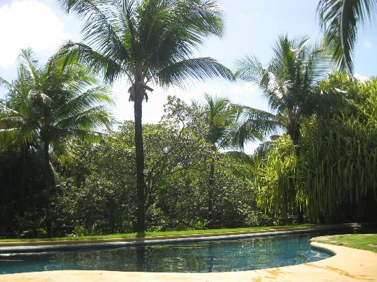 Toca da Coruja: Vista da piscina