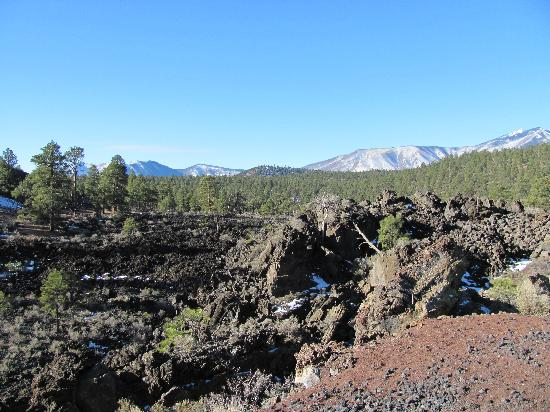 Sunset Crater Volcano National Monument : Lava flow 1
