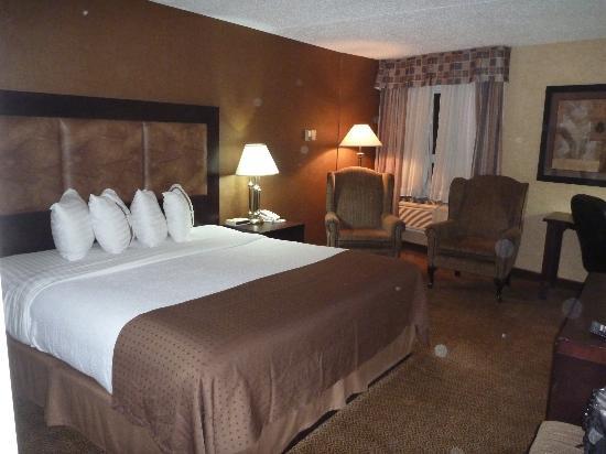 Holiday Inn Calgary Airport : King bed