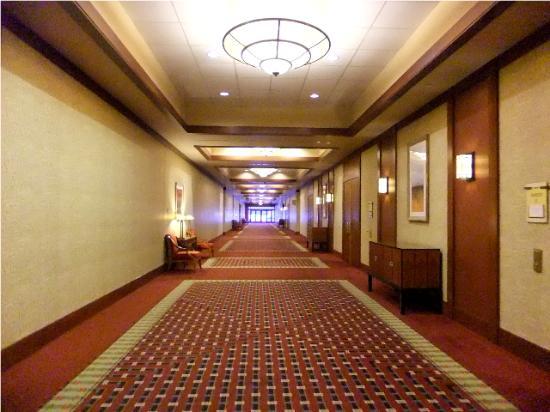 Alberta casino 15