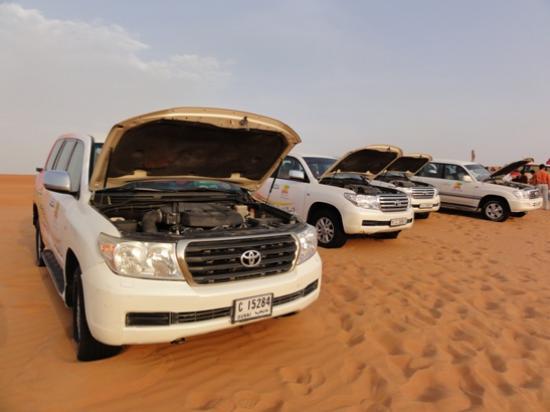 Lama Tours: Lama Desert Tour