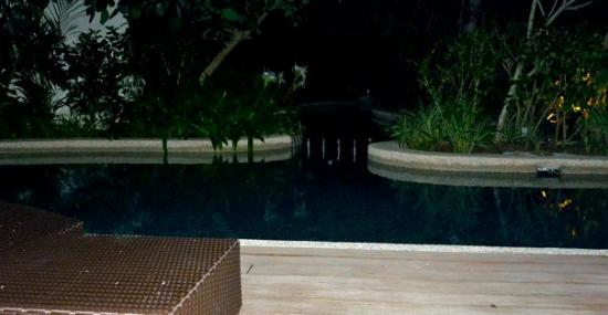 Hard Rock Hotel Penang : The private plunge-pool can only be accessed from the master-bedroom and it's connected to the h