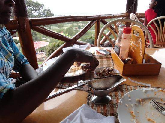 Lake Naivasha Panorama Park : Poor quality food