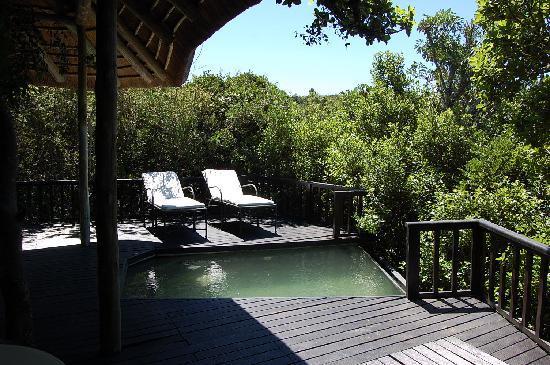 Kichaka Luxury Game Lodge: Terrasse mit plunch pool