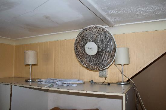 Palace Backpackers Hervey Bay: Fan in the bedroom, not cleaned for years
