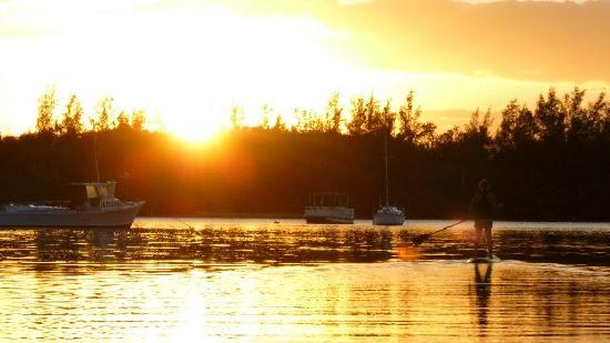 Jupiter Outdoor Center: Sunset SUP