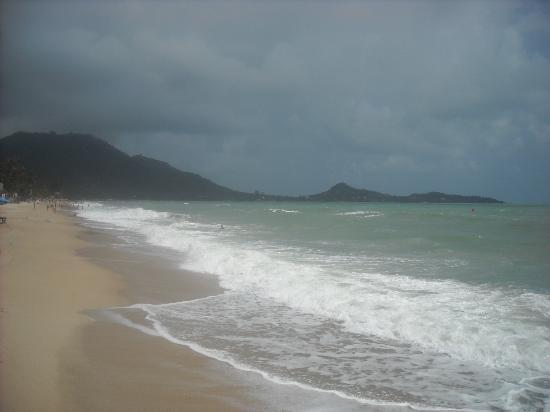 Samui Sense Beach Resort: Beach