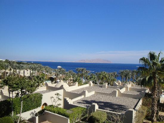 Four Seasons Resort Sharm El Sheikh: View from our patio