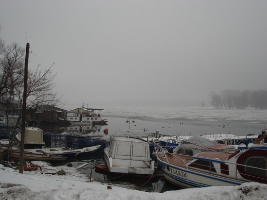Zemun, Σερβία: Some of boats can be used to take you to the island