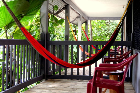 La Casa De Don David: Relax in your own hammock (Premium rooms)