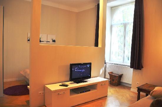 Bluedanube Apartments: TV