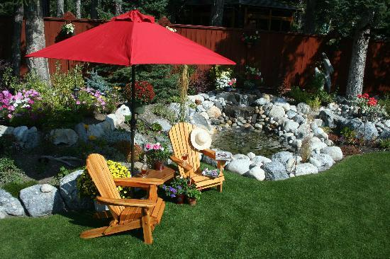 Chickadee Pines B&B : Relax & enjoy the views by the pond