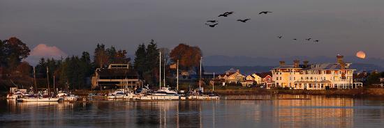 The Resort at Port Ludlow : Sunset