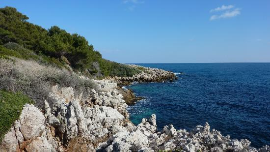 Chambre d'hotes La Potiniere: vue mer