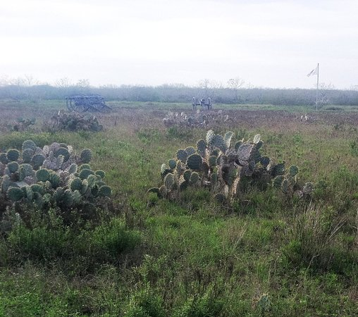 Brownsville, Teksas: Looking towards American Cannon on cactus and scrubland battlefield