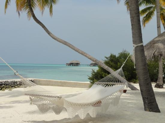 Conrad Maldives Rangali Island: our little patch of paradise