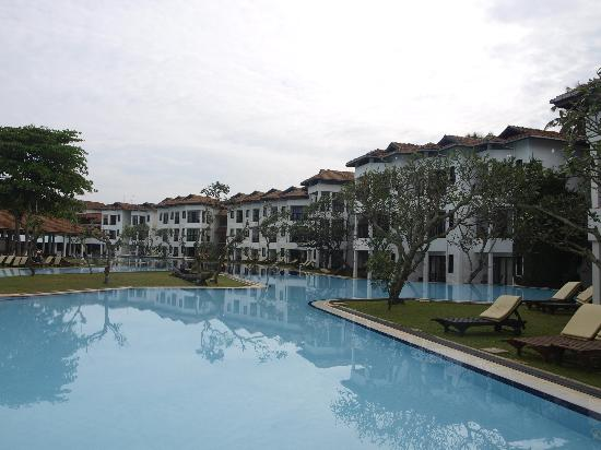 Waikkal, Sri Lanka: Pool apartment flats