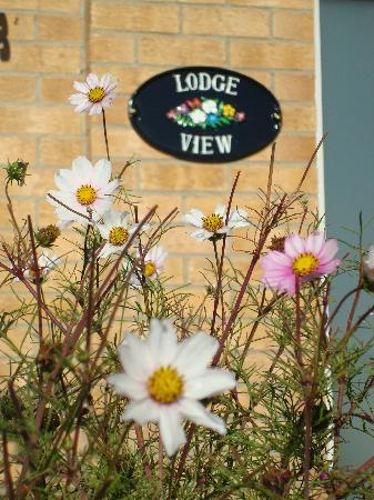 Lodge View B and B: Lodge View