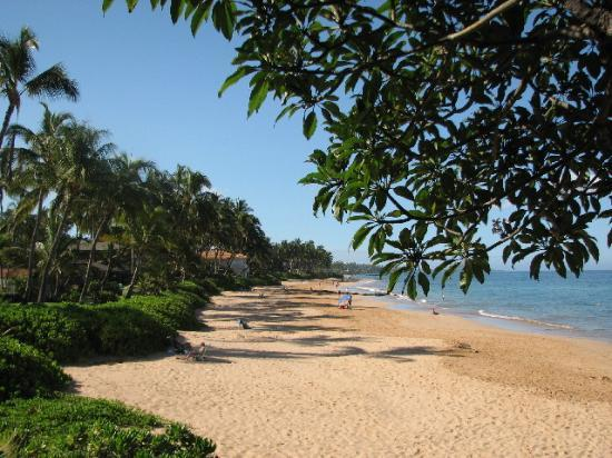 Hale Hui Kai Condominium: Beautiful Beach!!