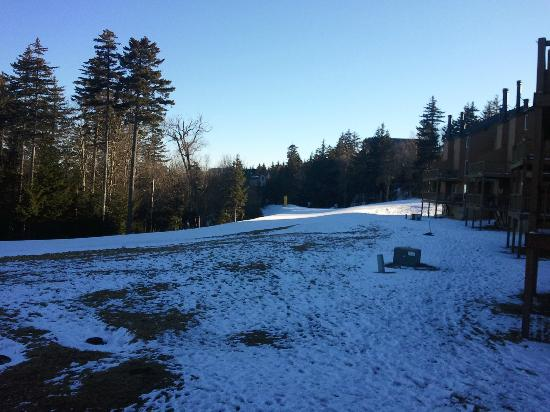 Powderidge Townhomes: Powderridge #30, View From Deck, Camp 4 Trail/ Powderridge Lift