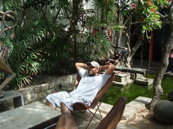Barefoot Garden Cafe: Chillin'
