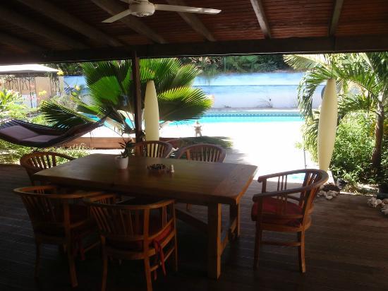 Frangipani Apartments Curacao: Veranda Pelican