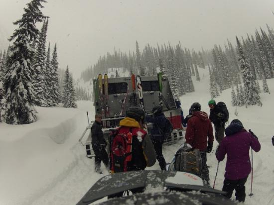 Great Northern Snowcat Skiing: the snowcat was warm and roomy