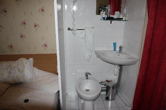 Hotel Les Chansonniers : Mini WC