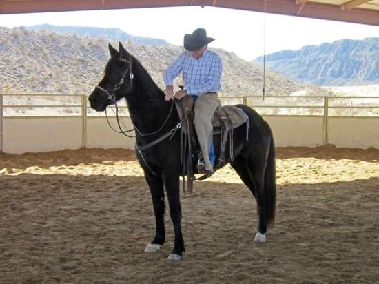 Lajitas, TX: OK Estes. An incredible horseman.