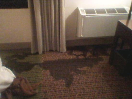 Southern Sun Ikoyi: Flooded room 2